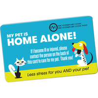 Medium Weight Plastic Cards for Membership Discount or ID