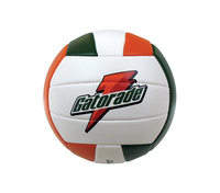 Stitched Volleyball (Overseas)