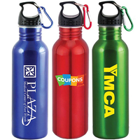 25 Oz Stainless Steel Bottle