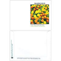 Impression Series Marigold Seeds