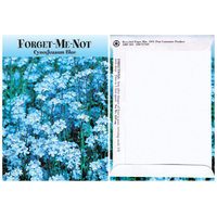 Forget-Me-Not Flower Seeds (Blue)