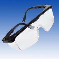 Safety glasses with black trim