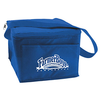 6 Can Collapsible Cooler Lunch Bag