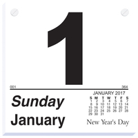 Refill Pad for Large Format Daily Calendar