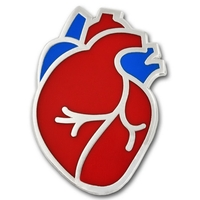 Human Heart Lapel Pin