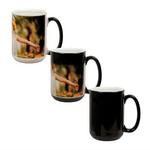 15 oz. Black Morphing Mug