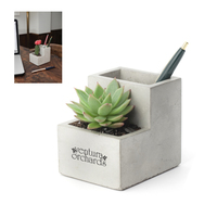 Kikkerland Small Concrete Desk Planter