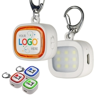 Mini 9 LED Key Chain Flash Light - Rechargeable