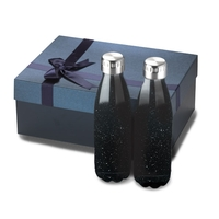2pc 17oz Stainless Steel Camper Serendipity Bottles Gift Set