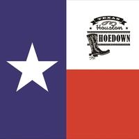 Texas Flag Bandanna