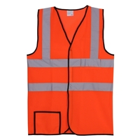 Dual Stripe L/XL Orange Mesh Safety Vest