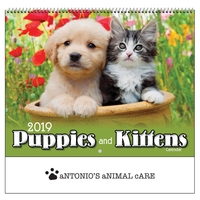 2019 Puppies & Kittens Wall Calendar - Spiral