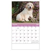 2019 Puppies & Kittens Wall Calendar - Stapled