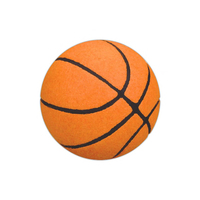 Basket Ball Sport Bouncing Ball