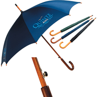 Silver Lined Automatic Opening Umbrella