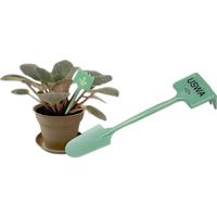 Plant Rake and Spade