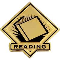 School Pin - Reading Lapel Pin