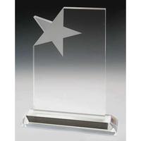 Medium Crystal Star Merit Award