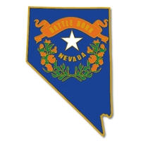 State - Nevada State Shape Lapel Pin