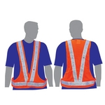 Illuminated safety vest with dual color lights