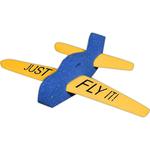 3-Piece Foam Airplane