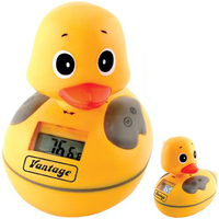 Waterproof AM/FM duck radio with water thermometer