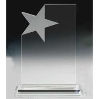 Large Crystal Star Merit Award