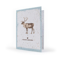 Holiday Seed Paper Card