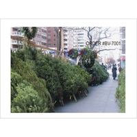 Holiday Card - NYC Sidewalk Tree Lot