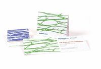 Premium Hawthorn Paper Seed Invitation