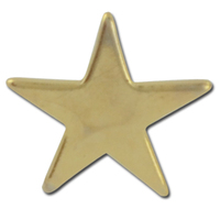 Flat Star 2 Lapel Pin