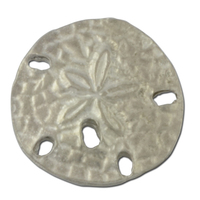 Sand Dollar 2 Lapel Pin