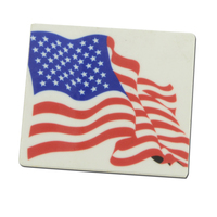 Photo Flag Lapel pin
