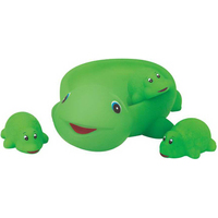 Rubber Turtle Family
