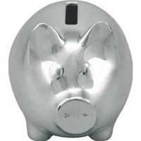 Color Of Money Piggy Bank