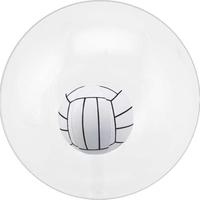 "16"" Inflatable Transparent Beach Ball"