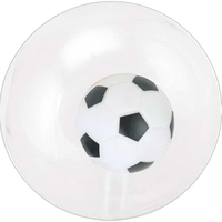 "16"" Inflatable Transparent Beach Ball"