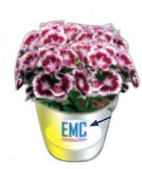 """3"""" Silver Metal Flower Bucket GroPot Kit"""