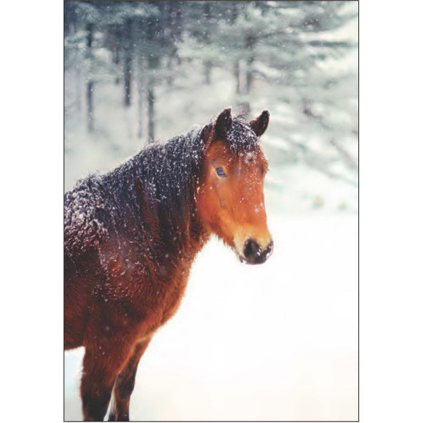 Item #67740 Horse in Snow