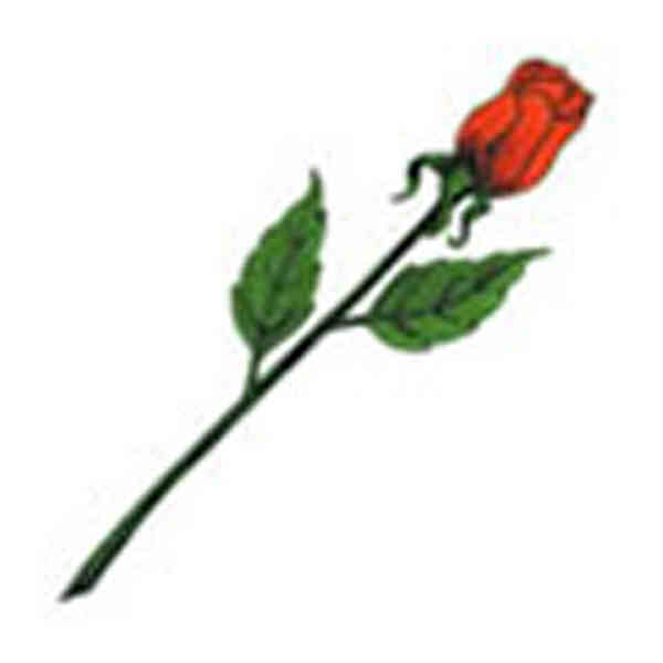 Rosebud stem stock tattoo designs item 1331 for Rose with stem tattoo designs